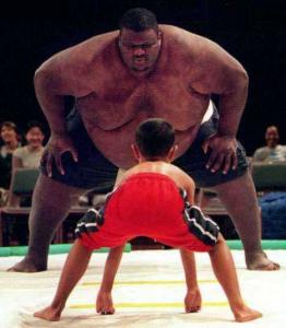 Sumo Wrestler Picture 11-3-13